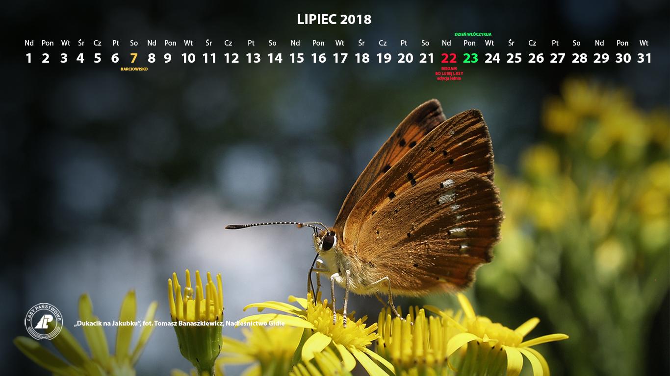 Kalendarz_lipiec_2018_1366x768[1].jpg