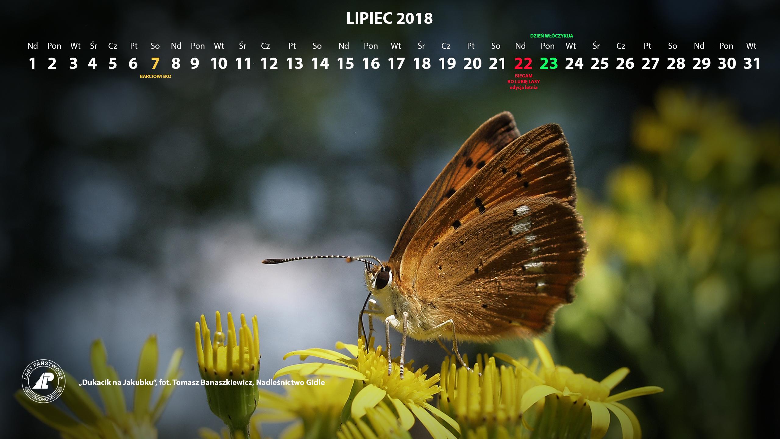Kalendarz_lipiec_2018_2560x1440[1].jpg