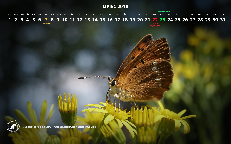 Kalendarz_lipiec_2018_2880x1800[1].jpg