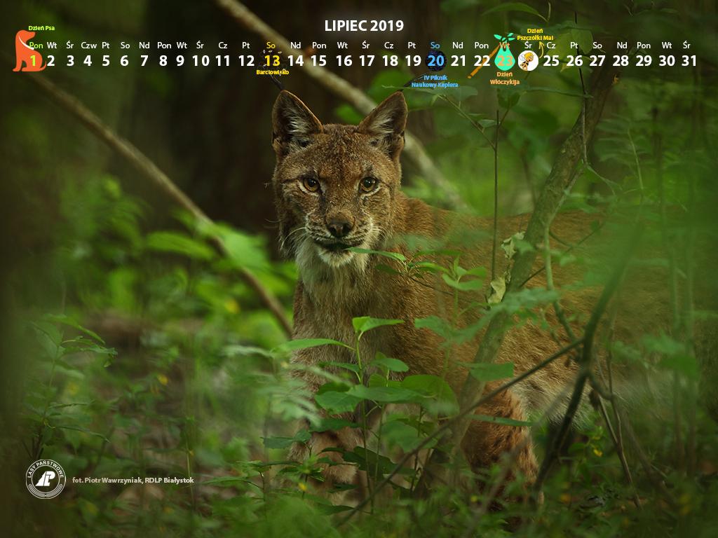 Kalendarz_lipiec2019_1024x768[1].jpg