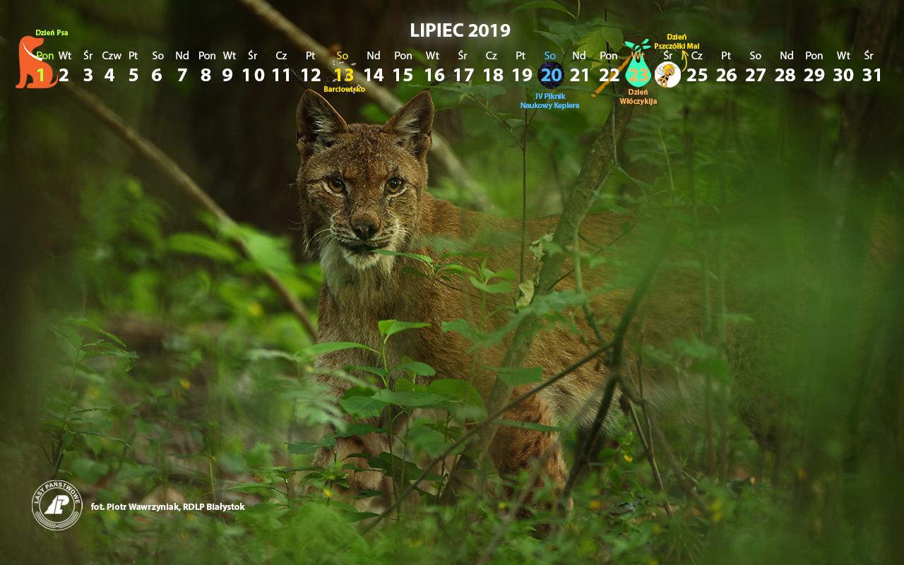 Kalendarz_lipiec2019_1200x800[1].jpg