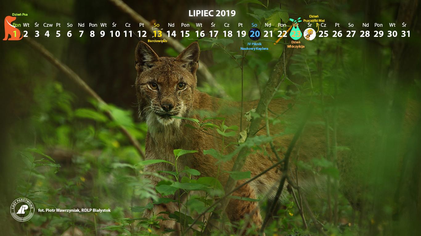 Kalendarz_lipiec2019_1366x768[1].jpg
