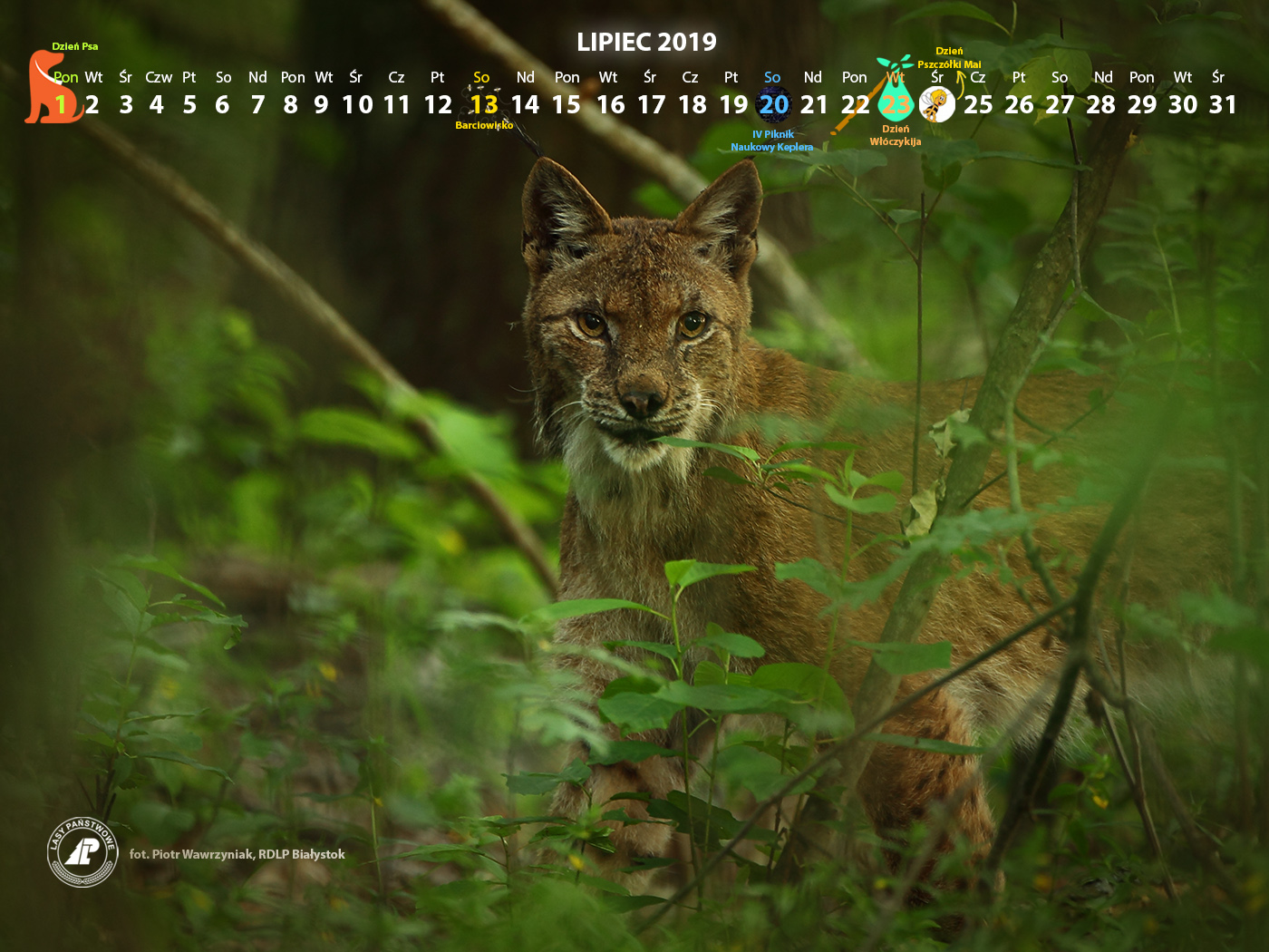 Kalendarz_lipiec2019_1400x1050[1].jpg