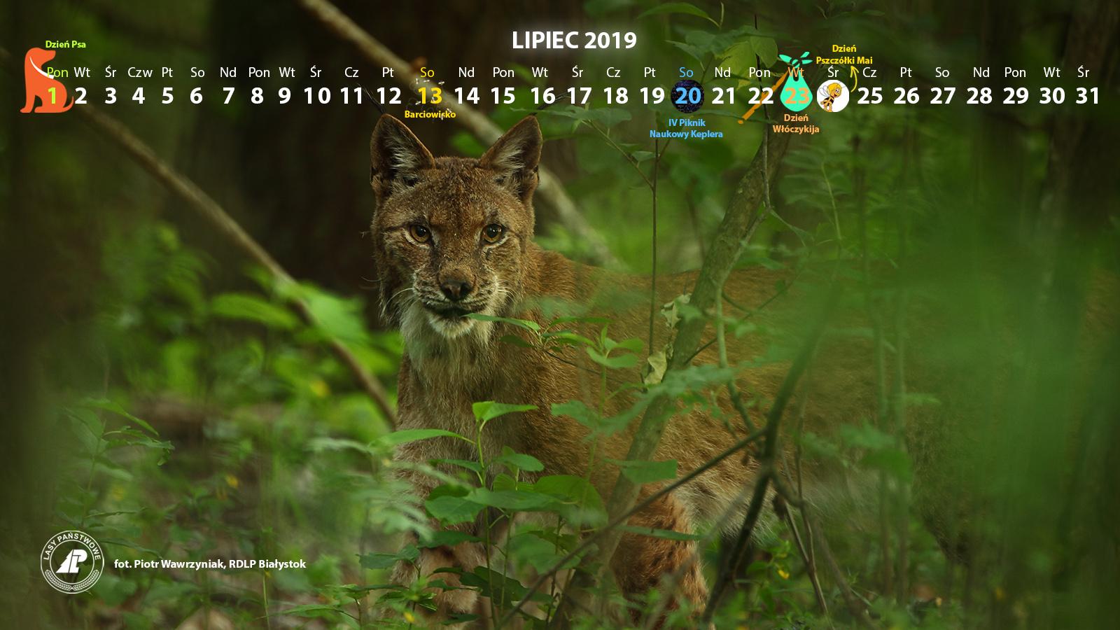 Kalendarz_lipiec2019_1600x900[1].jpg