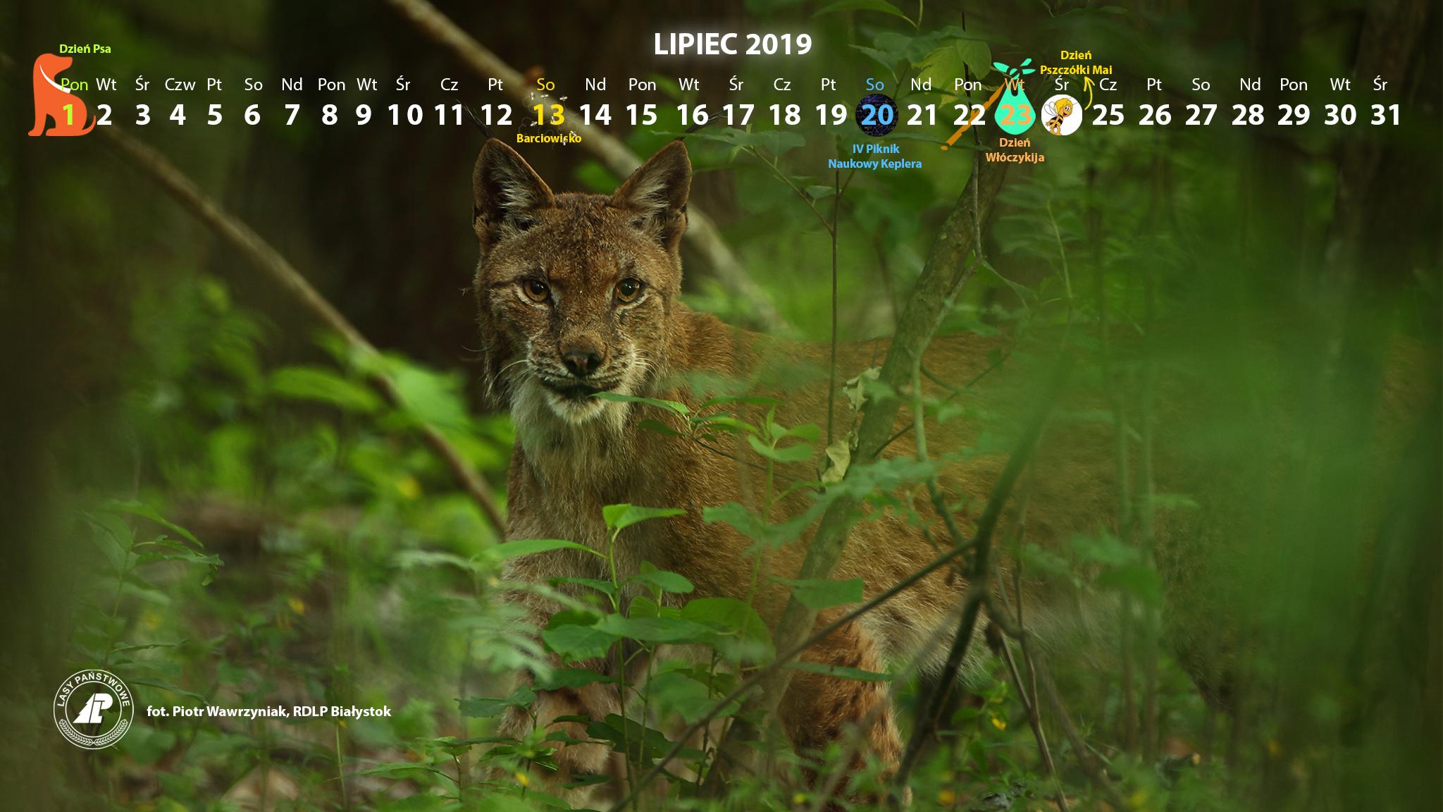 Kalendarz_lipiec2019_2048x1152[1].jpg