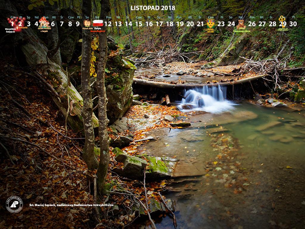 Kalendarz_listopad_2018_1024x768[1].jpg