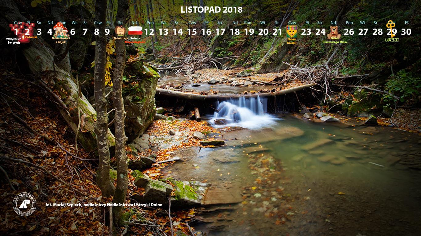Kalendarz_listopad_2018_1366x768[1].jpg