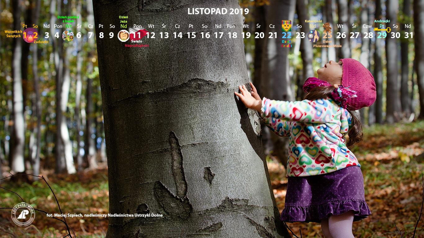 Kalendarz_listopad_2019_1366x768[1].jpg