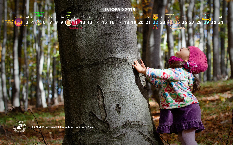Kalendarz_listopad_2019_2880x1800[1].jpg