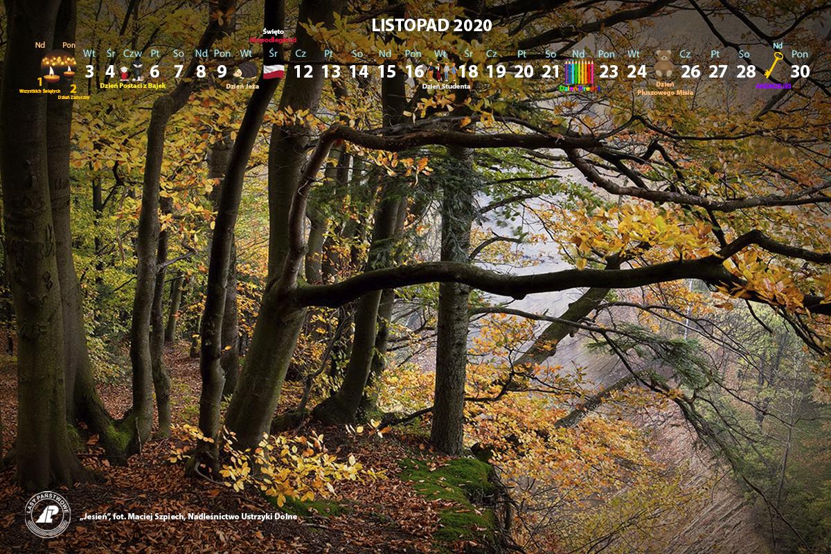 Kalendarz_listopad_2020_1200x800[1].jpg
