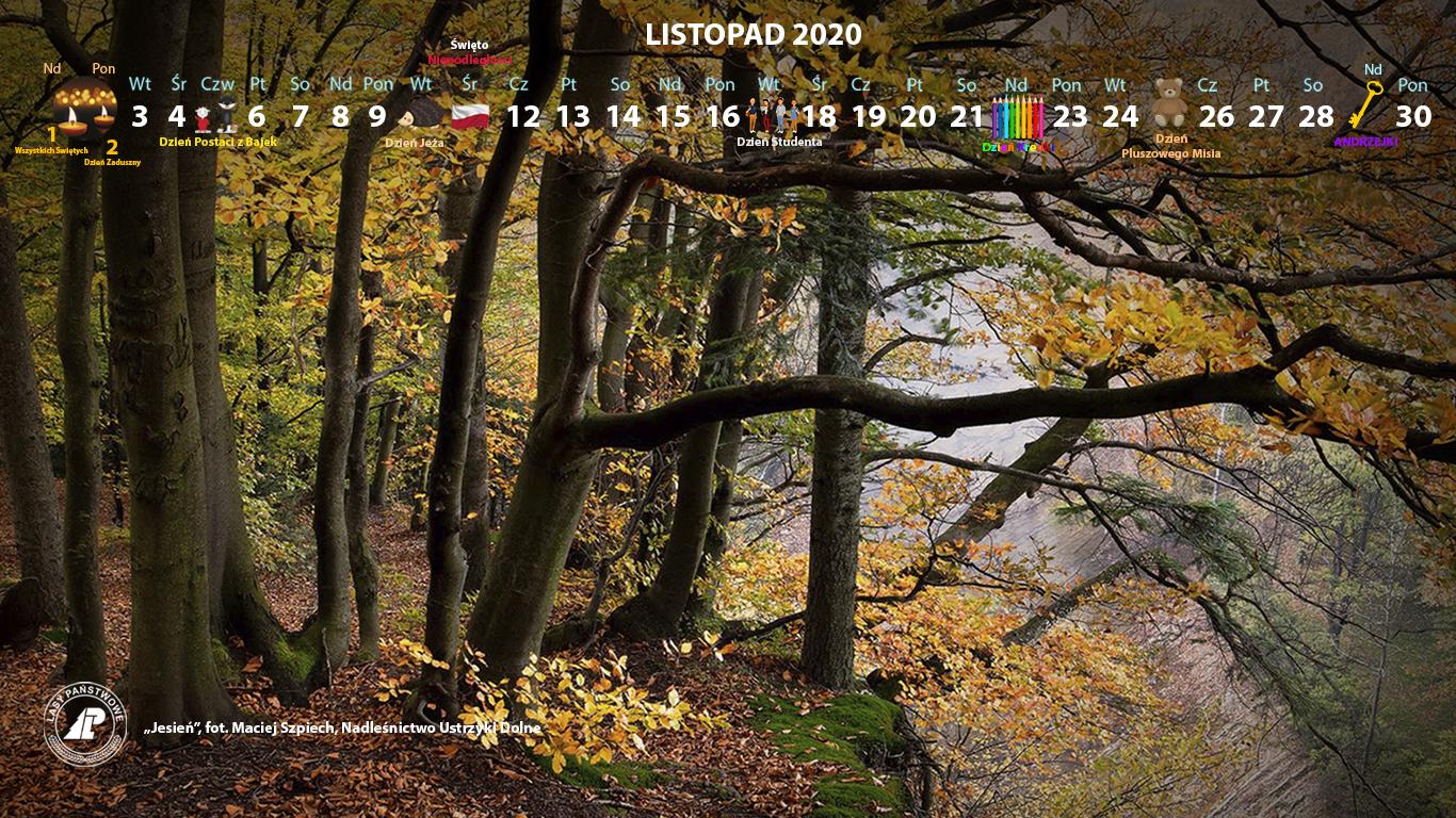 Kalendarz_listopad_2020_1366x768[1].jpg