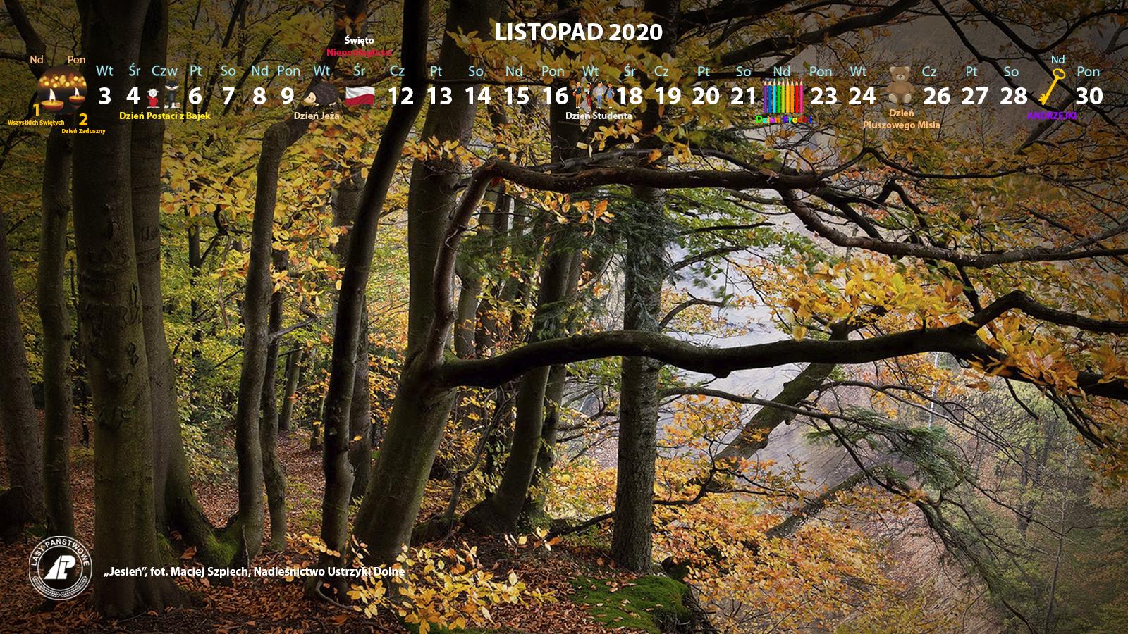 Kalendarz_listopad_2020_1600x900[1].jpg