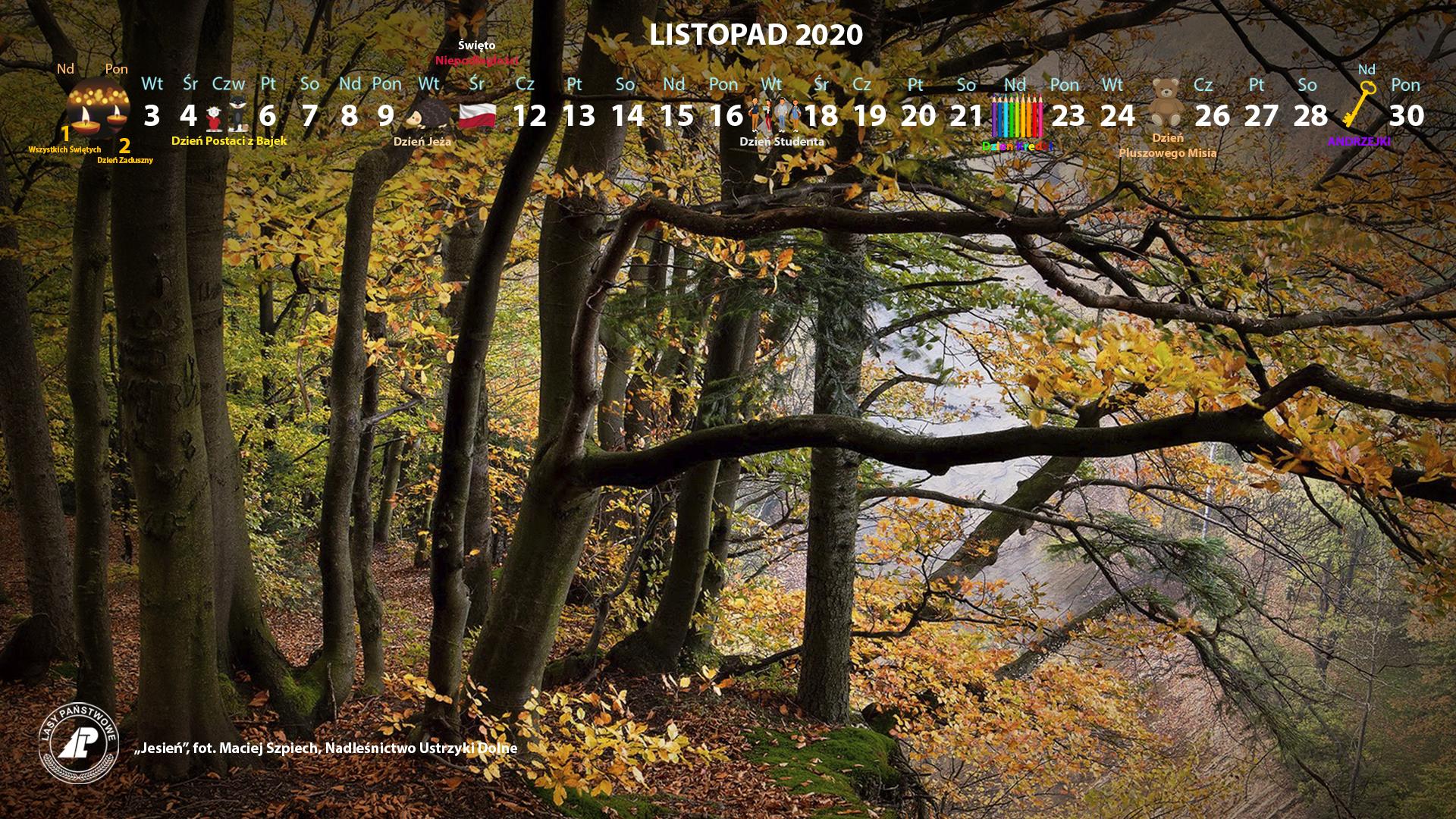 Kalendarz_listopad_2020_1920x1080[1].jpg