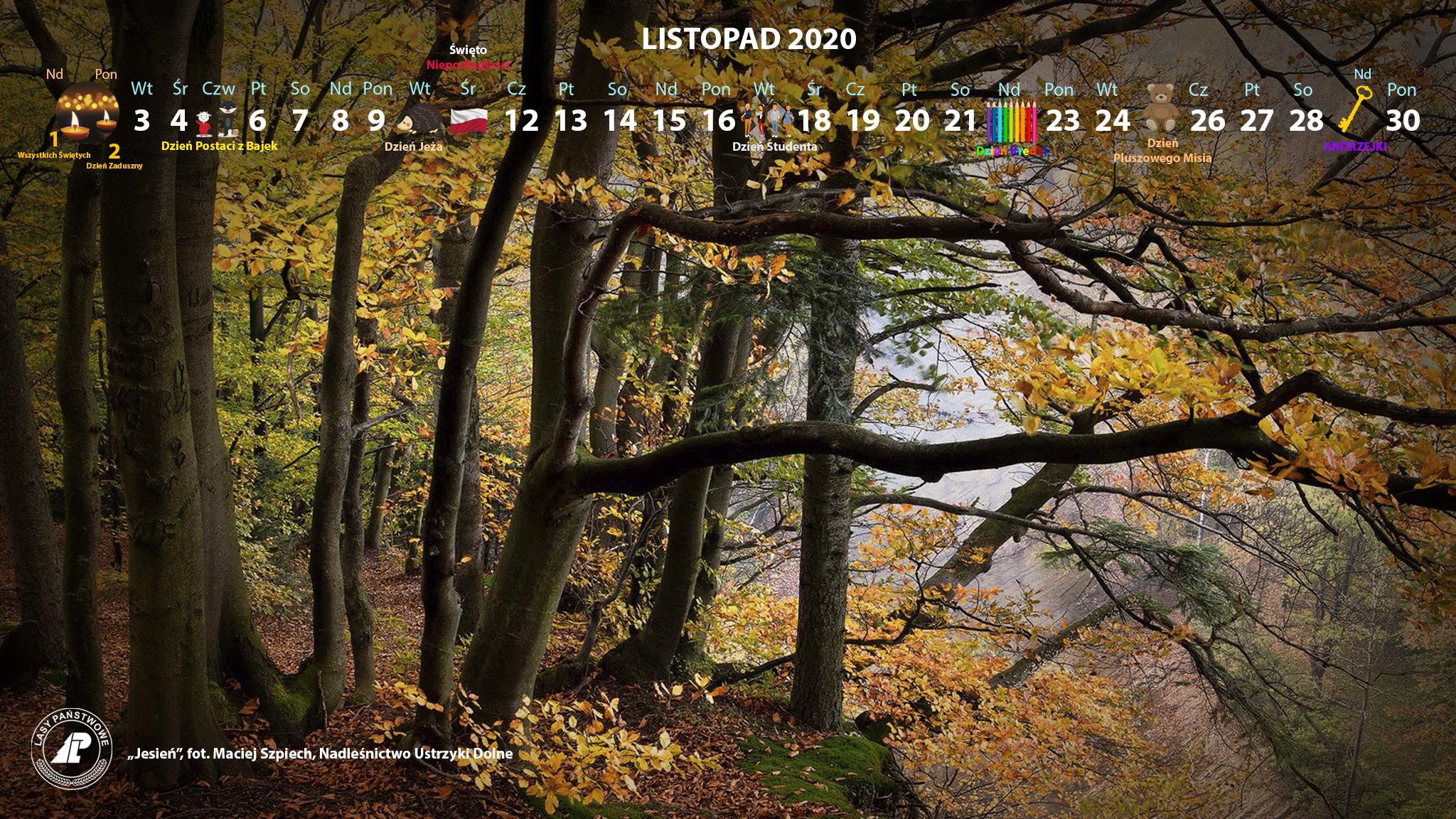 Kalendarz_listopad_2020_2048x1152[1].jpg