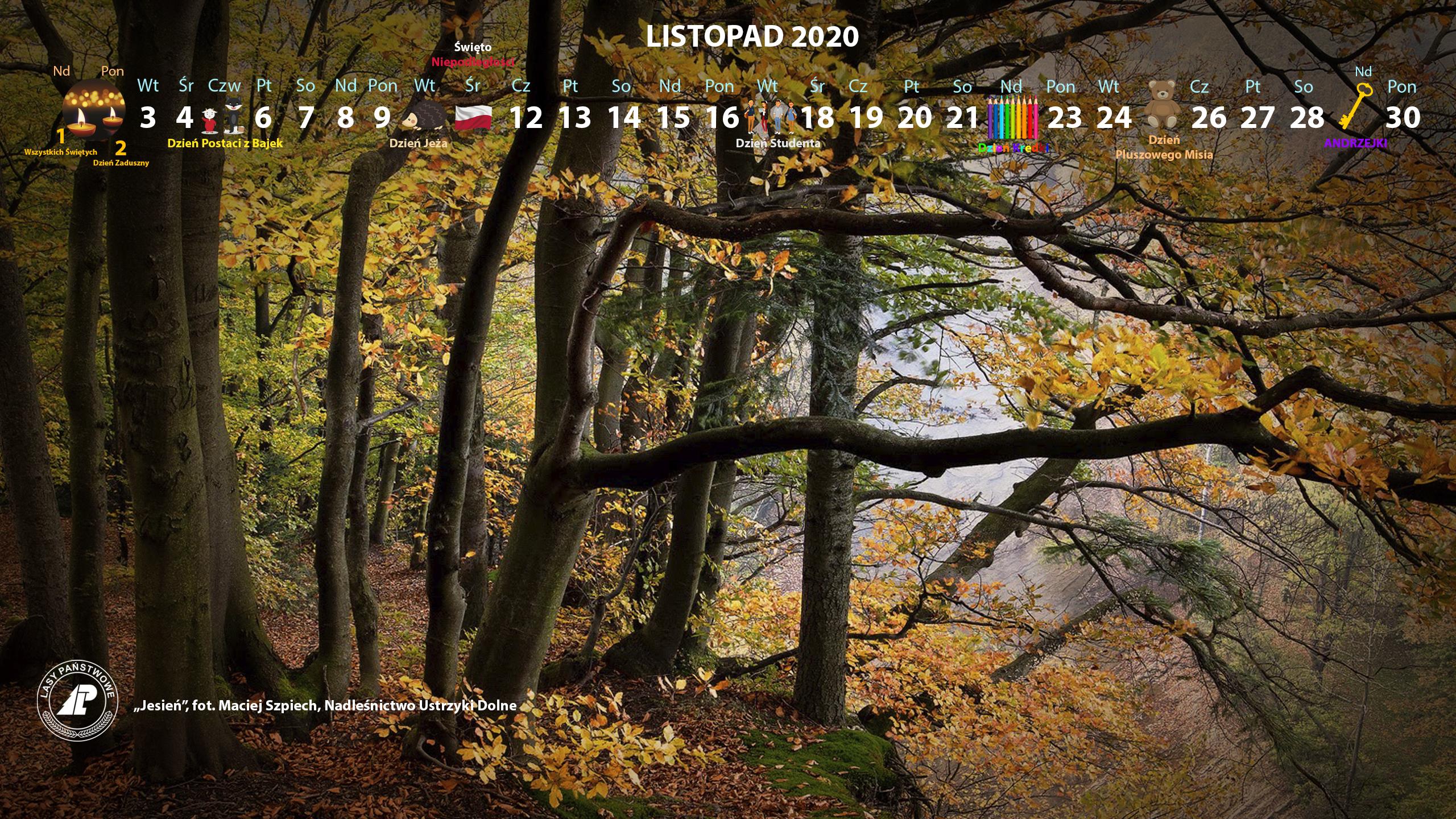 Kalendarz_listopad_2020_2560x1440[1].jpg