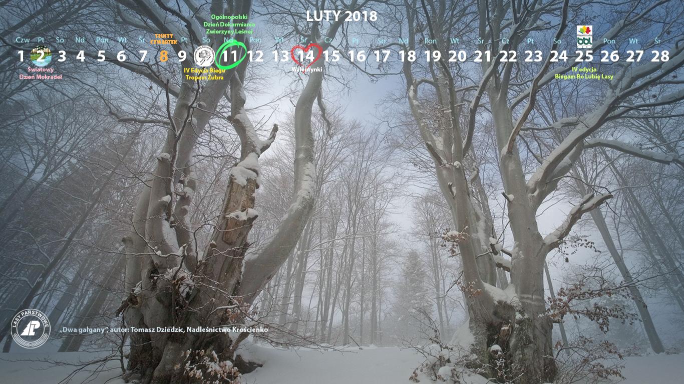 Kalendarz luty 2018 1366x768