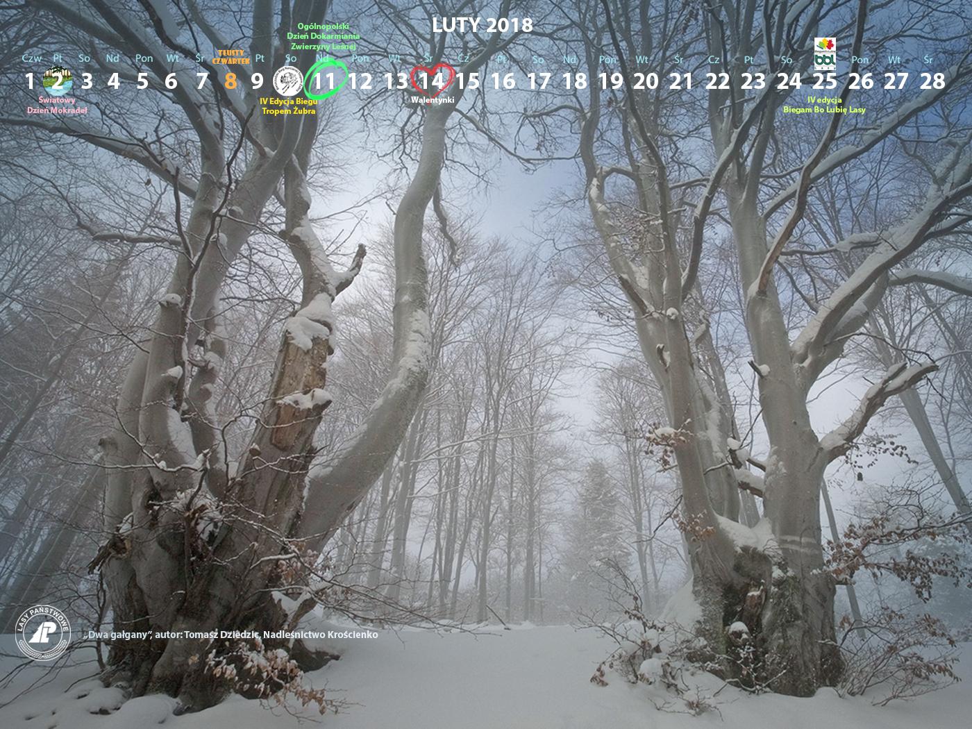 Kalendarz luty 2018 1400x1050