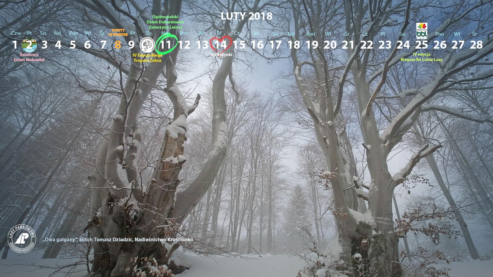 Kalendarz luty 2018 1600x900