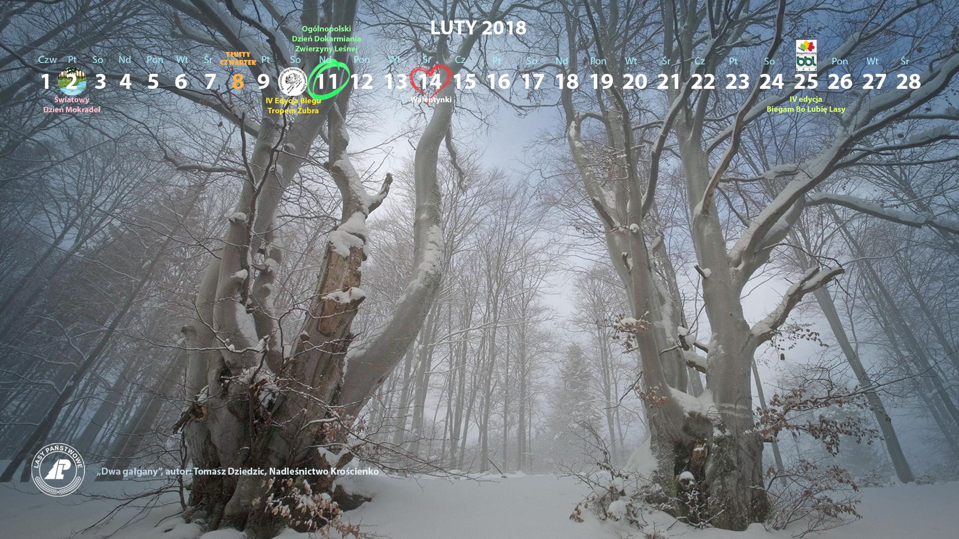 Kalendarz luty 2018 1920x1080