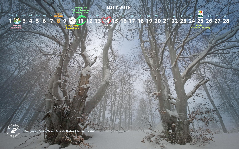 Kalendarz luty 2018 2880x1800