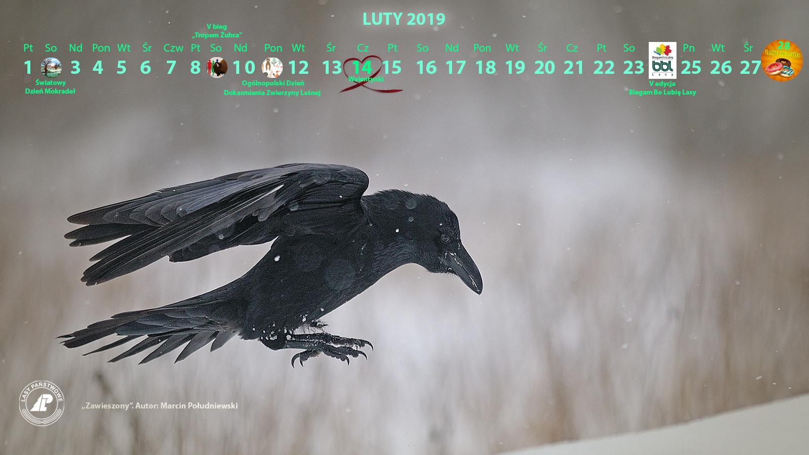 Kalendarz_luty_2019_1600X900_2[1].jpg