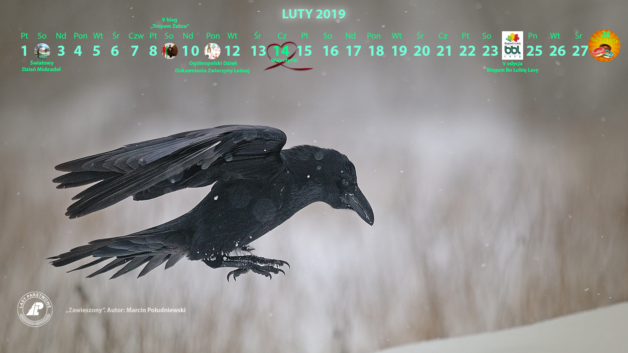 Kalendarz_luty_2019_2048X1152_2[1].jpg