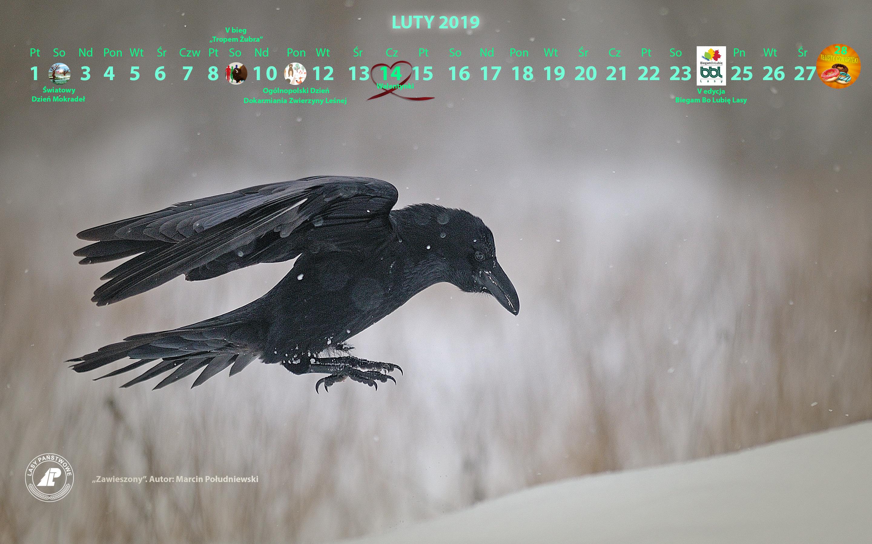 Kalendarz_luty_2019_2880X1800_2[1].jpg