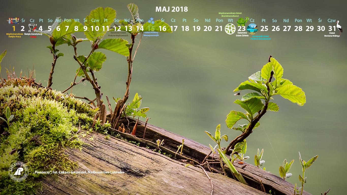 Kalendarz maj 2018 1366x768.jpg