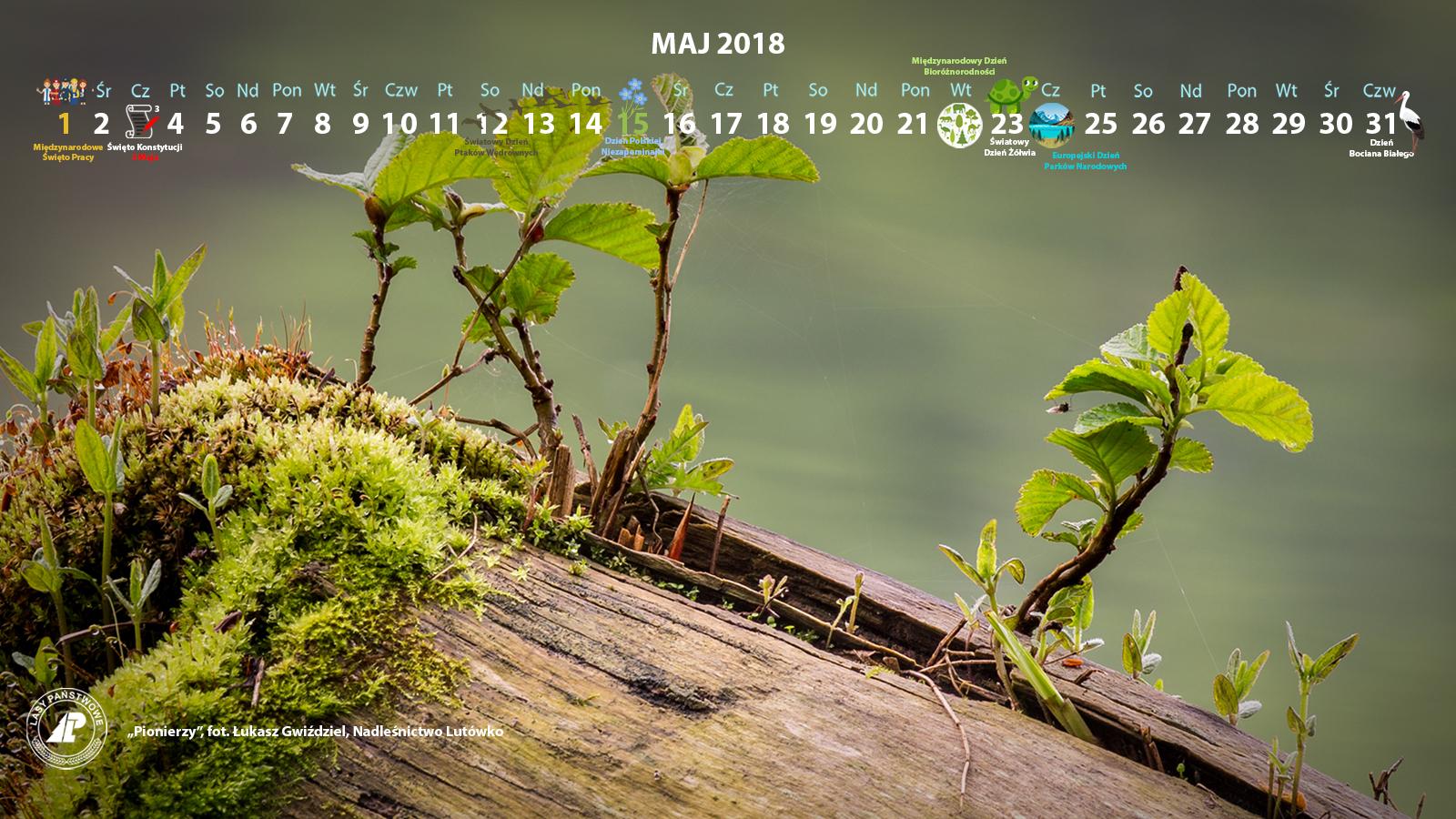 Kalendarz maj 2018 1600x900.jpg