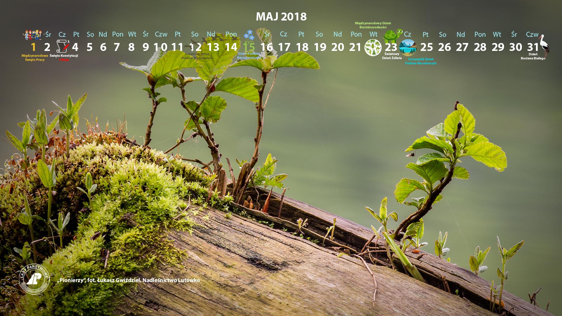 Kalendarz maj 2018 1920x1080.jpg