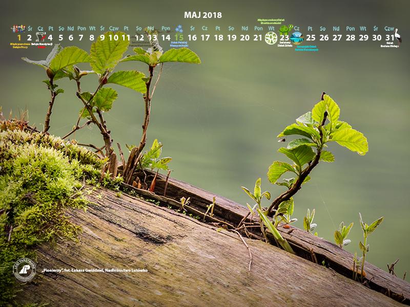 Kalendarz maj 2018 800x600.jpg