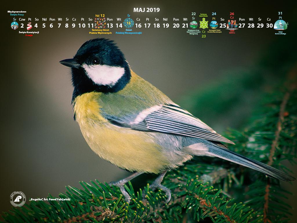 Kalendarz_maj_2019_1024x768[1].jpg