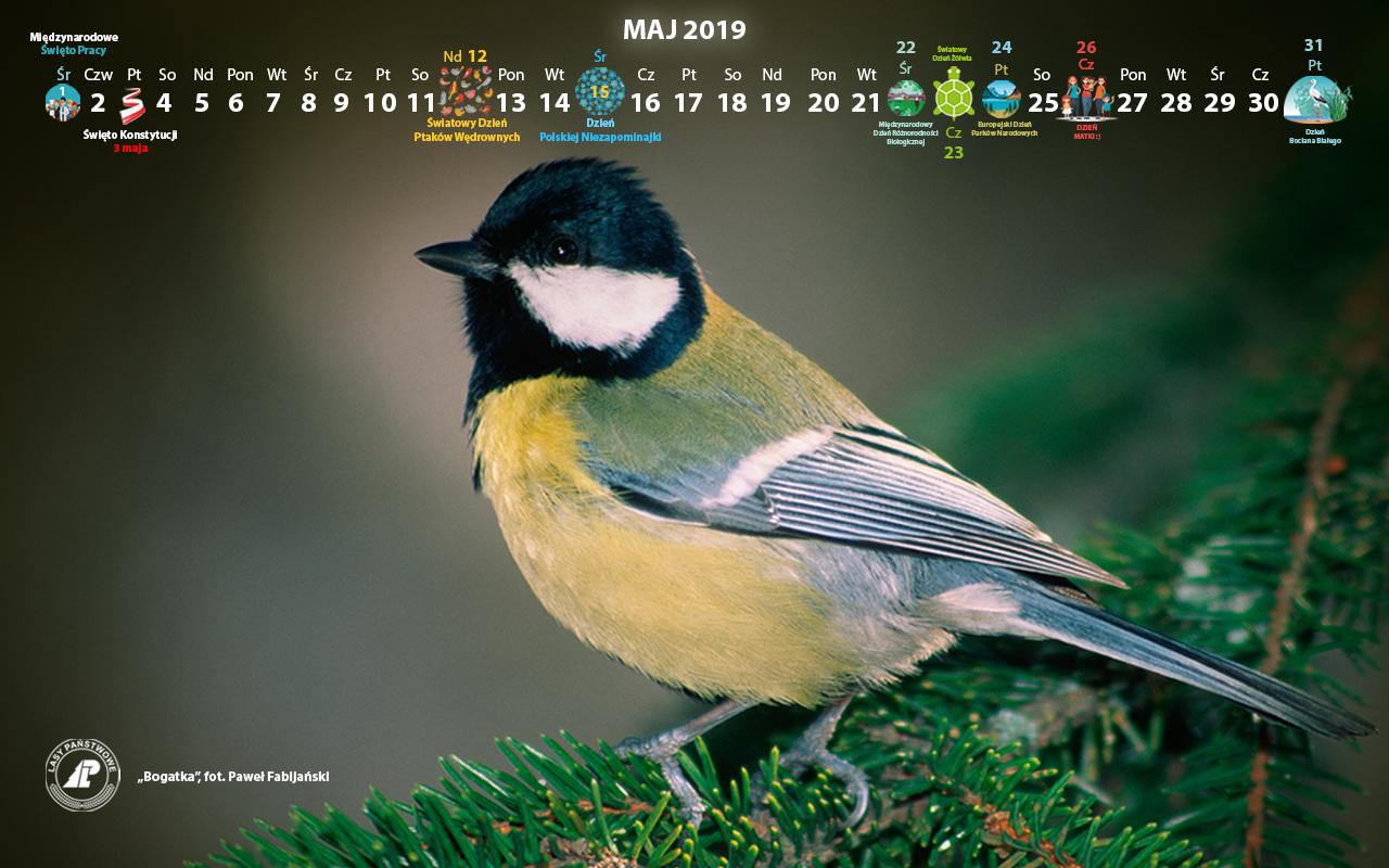 Kalendarz_maj_2019_1280x800[1].jpg