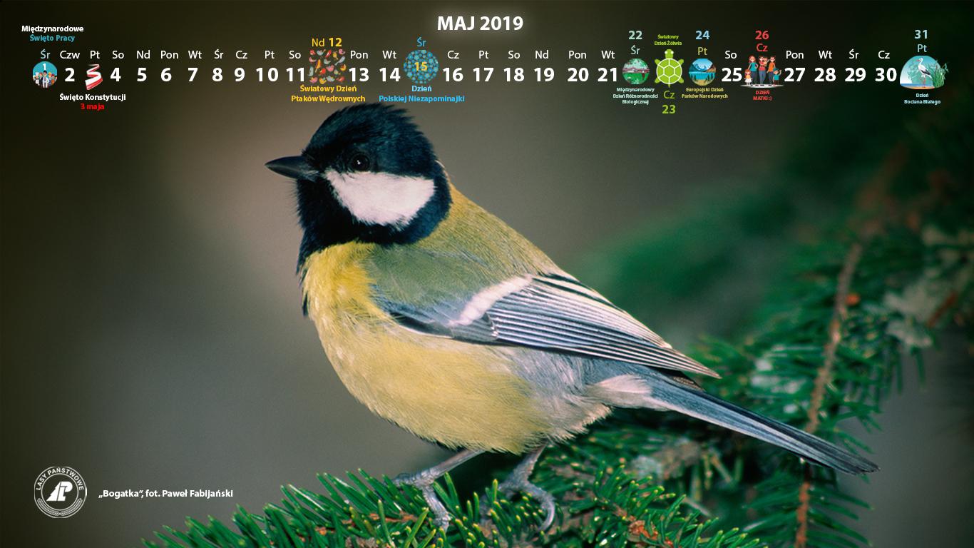 Kalendarz_maj_2019_1366x768[1].jpg