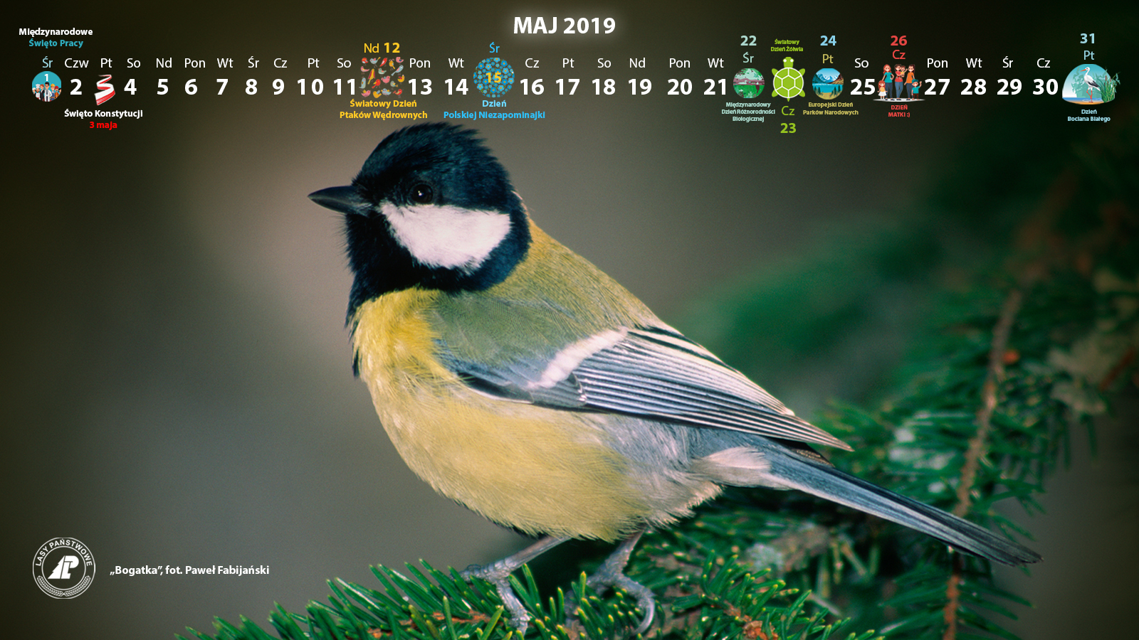 Kalendarz_maj_2019_1600x900[1].jpg