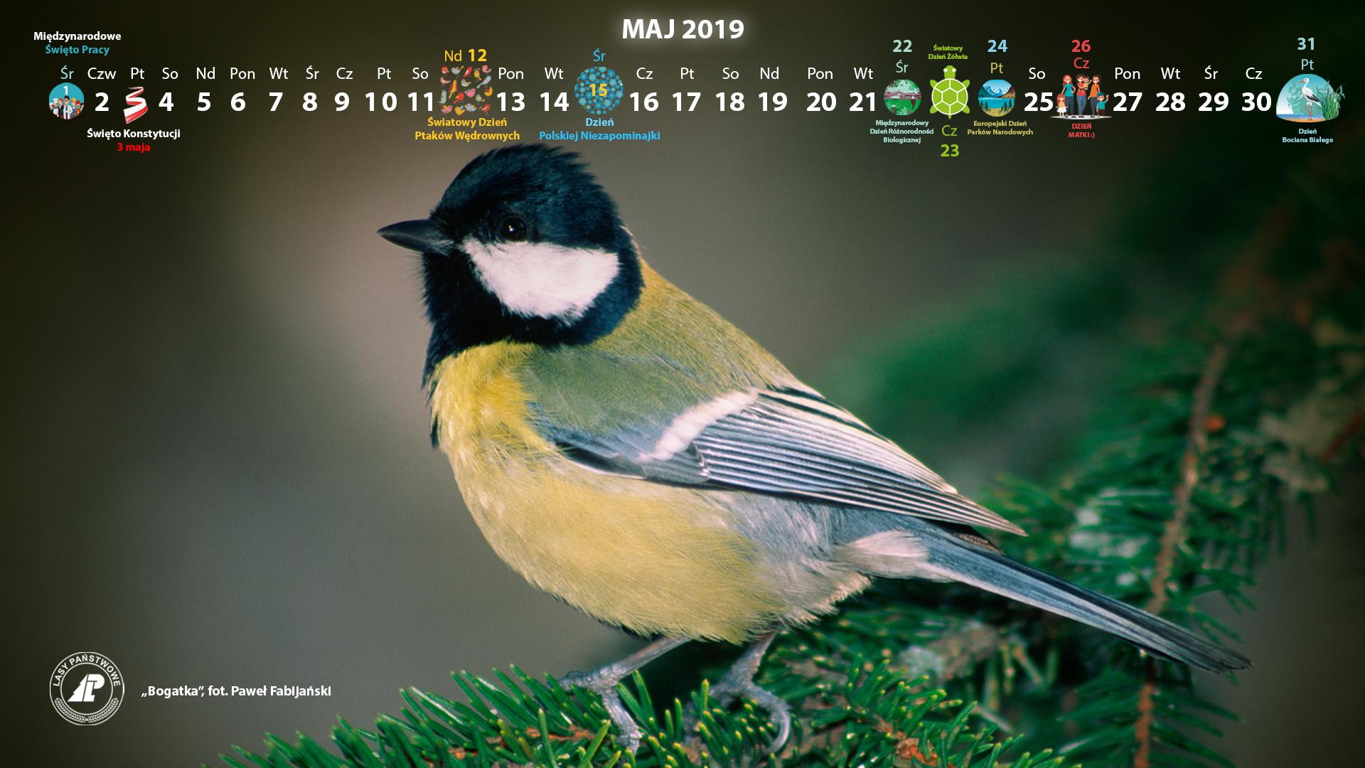 Kalendarz_maj_2019_1920x1080[1].jpg
