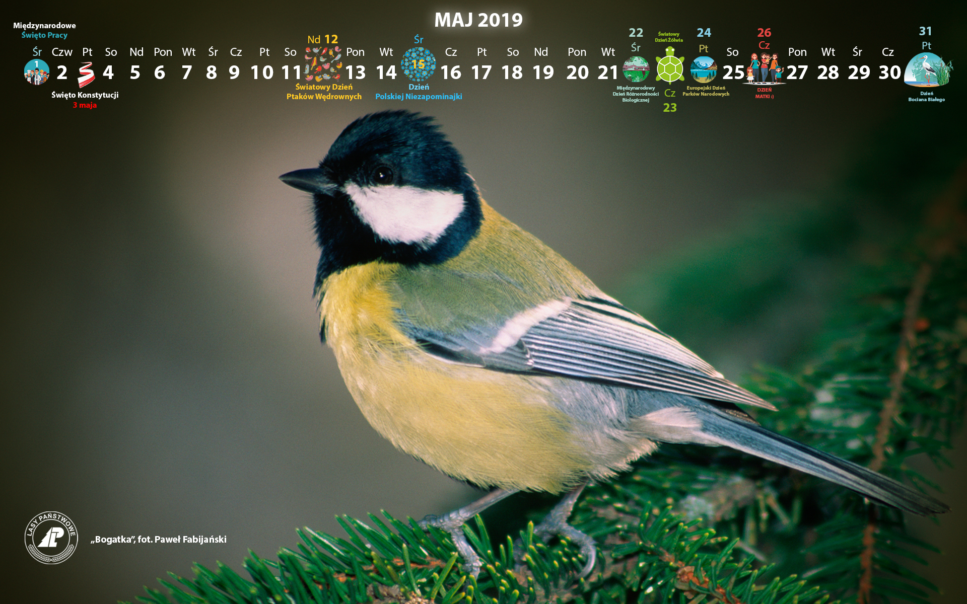 Kalendarz_maj_2019_1920x1200[1].jpg