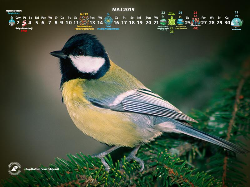 Kalendarz_maj_2019_800x600[1].jpg
