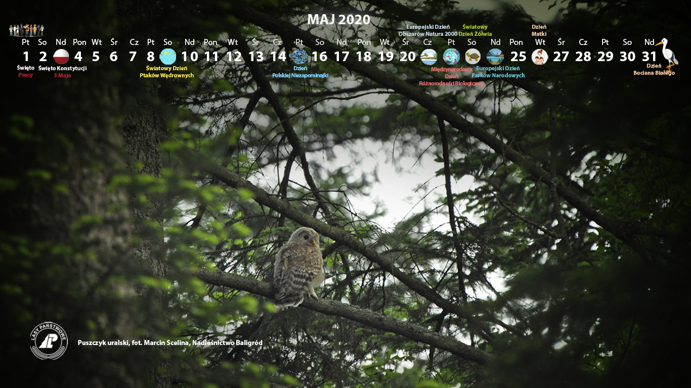 Kalendarz_maj_2020_1366x768[1].jpg