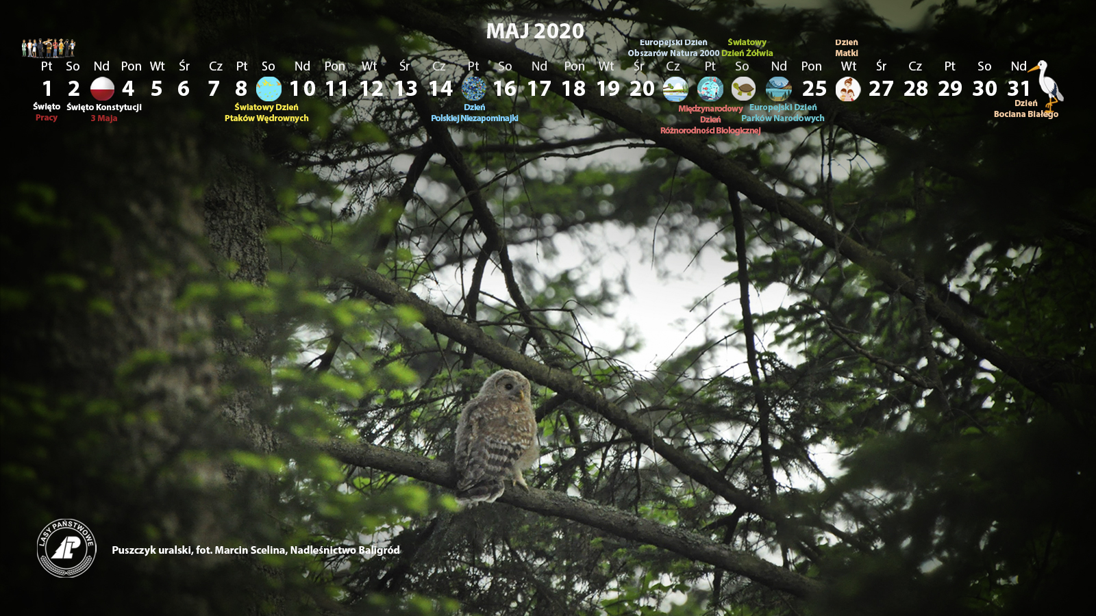 Kalendarz_maj_2020_1600x900[1].jpg