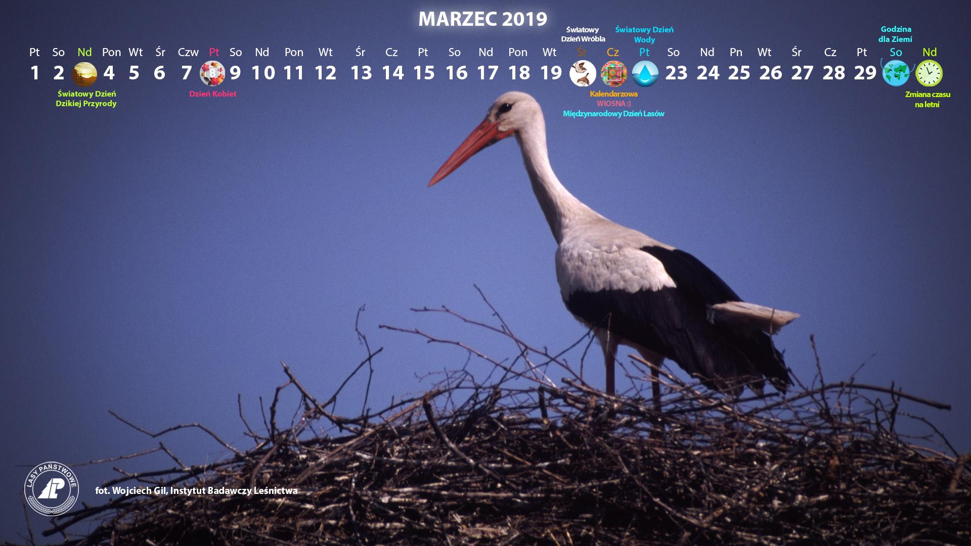 Kalendarz_marzec_2019_1920x1080[1].jpg
