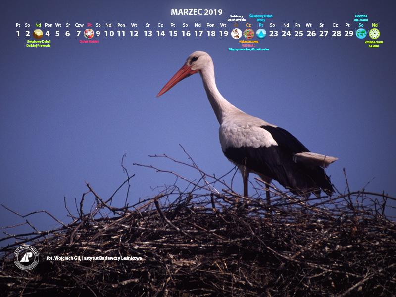 Kalendarz_marzec_2019_800x600[1].jpg