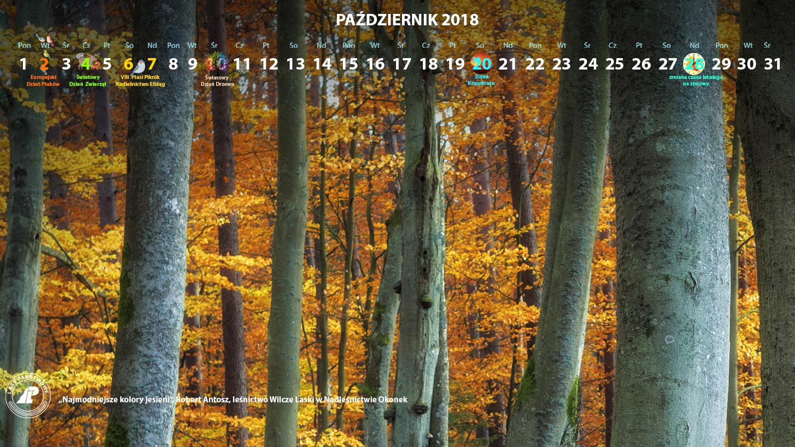 Kalendarz_październik_2018_1600x900[1].jpg