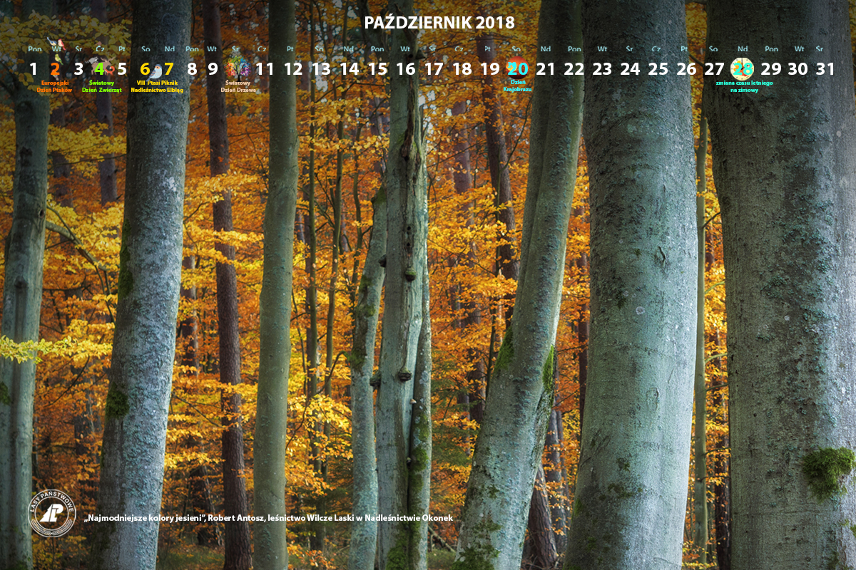 Kalendarz_wrzesień_2018_1200x800[1].jpg
