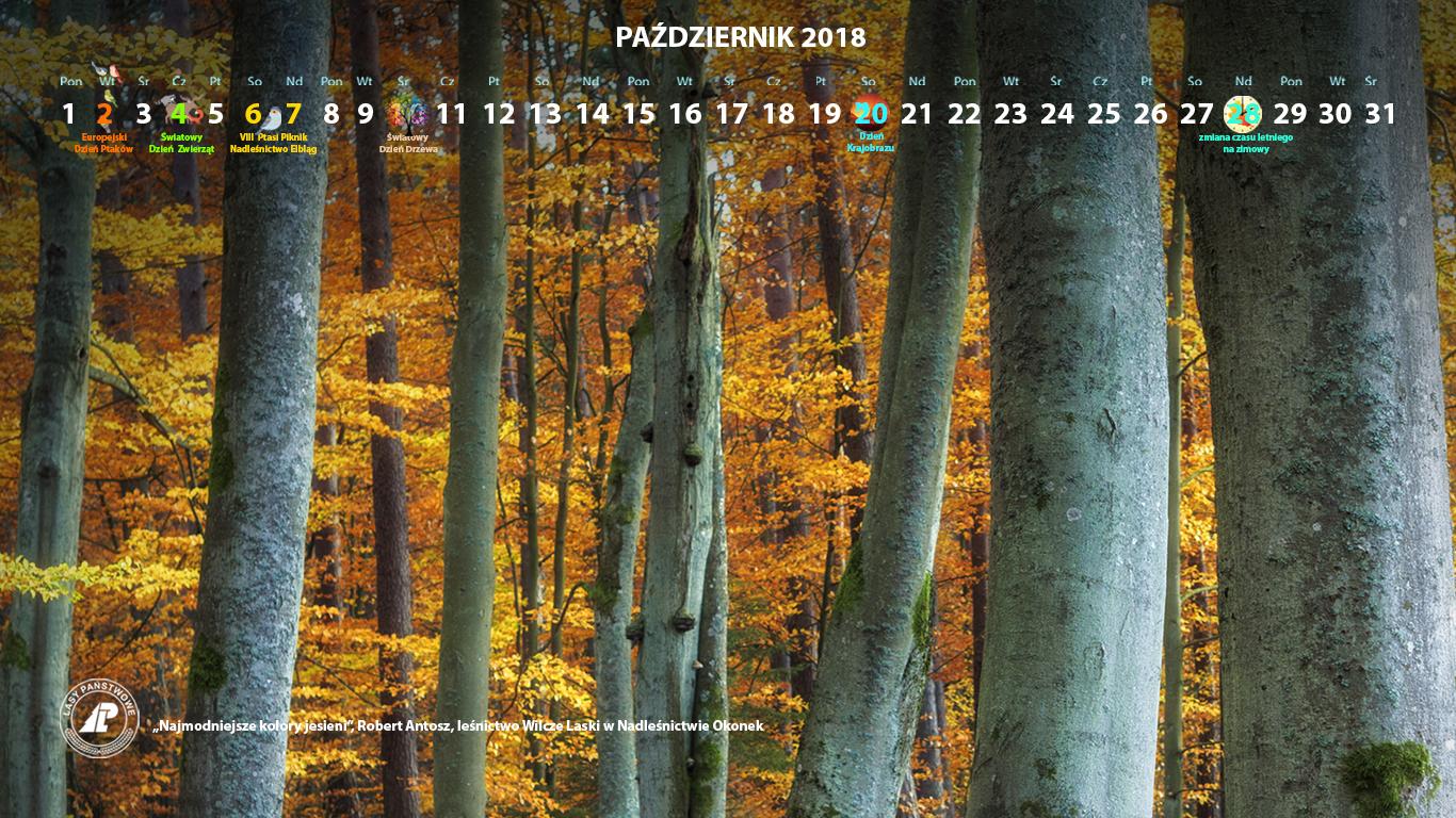 Kalendarz_wrzesień_2018_1366x768[1].jpg