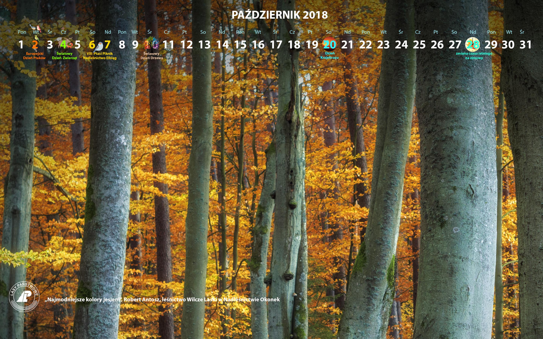 Kalendarz_wrzesień_2018_2880x1800[1].jpg