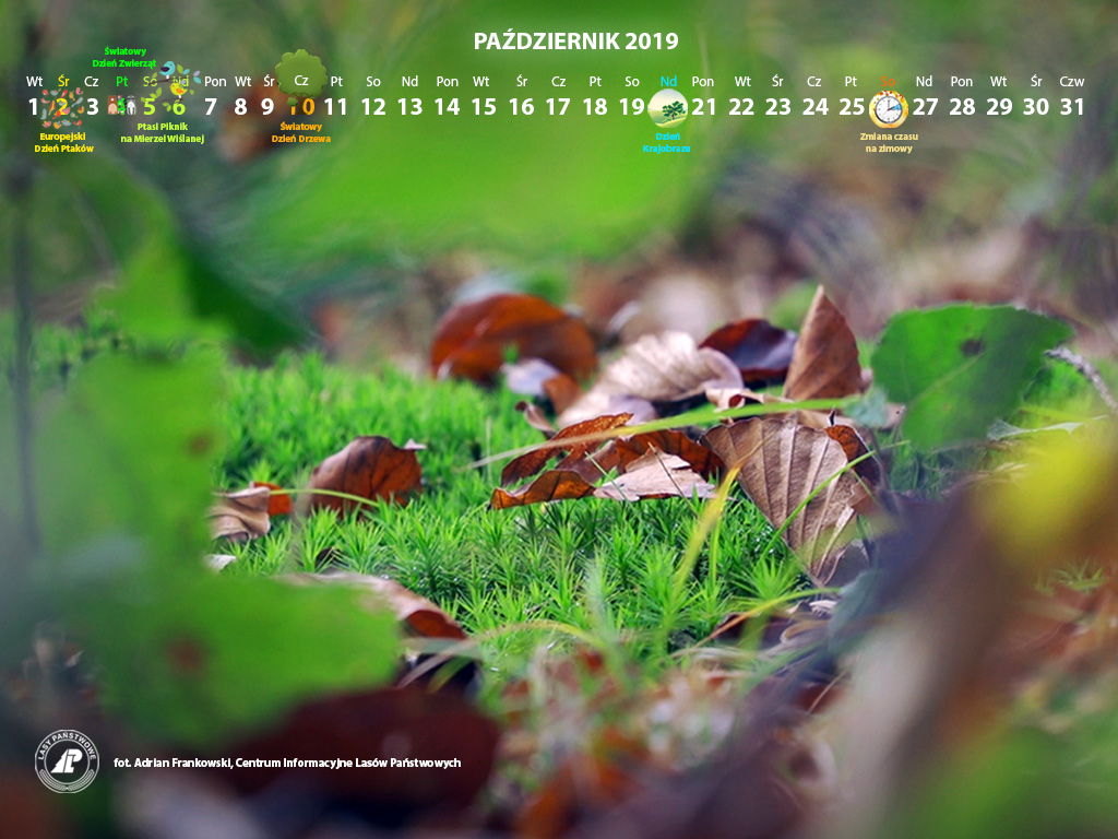 Kalendarz_październik_2019_1024x768[1].jpg