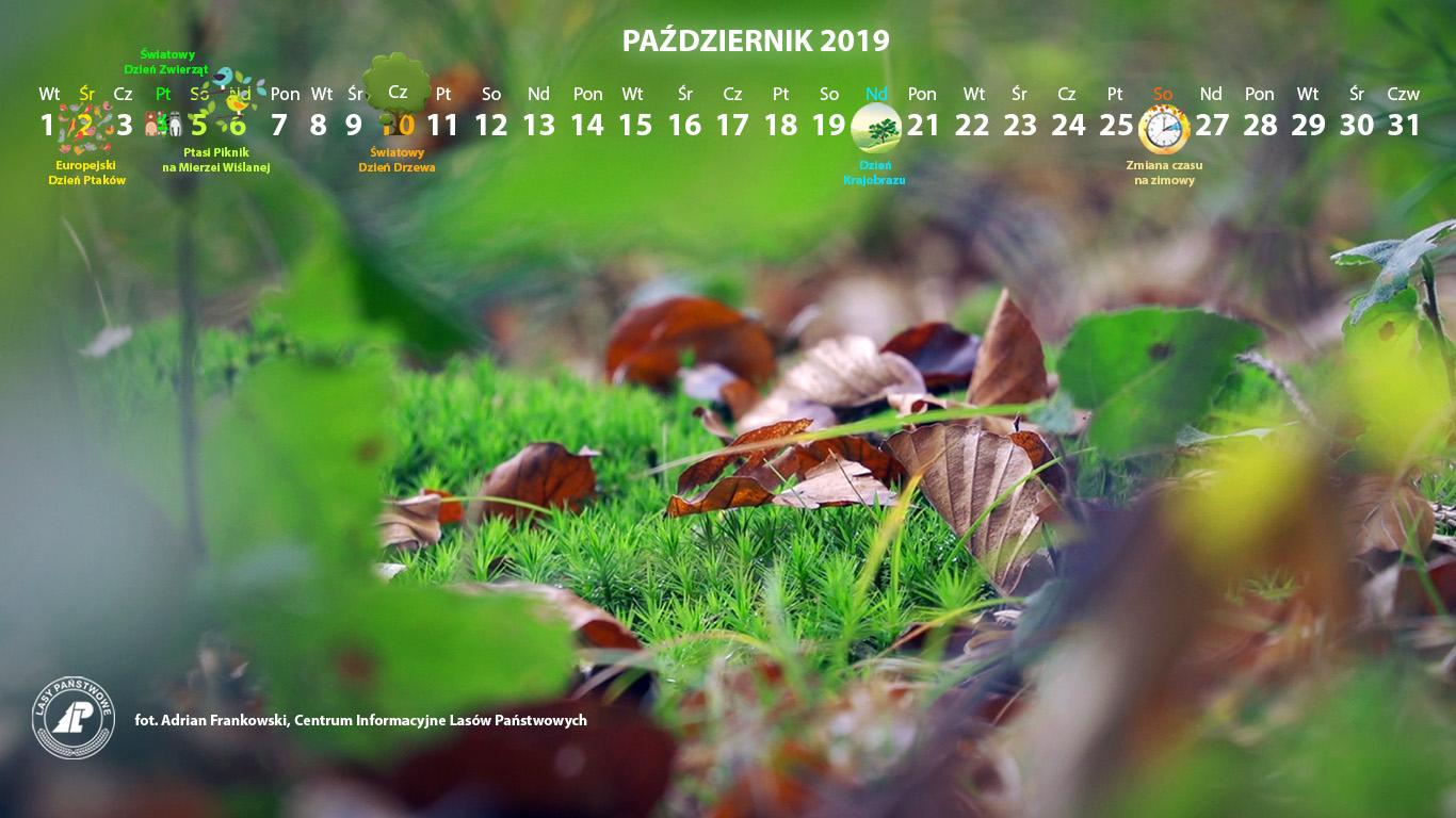Kalendarz_październik_2019_1366x768[1].jpg