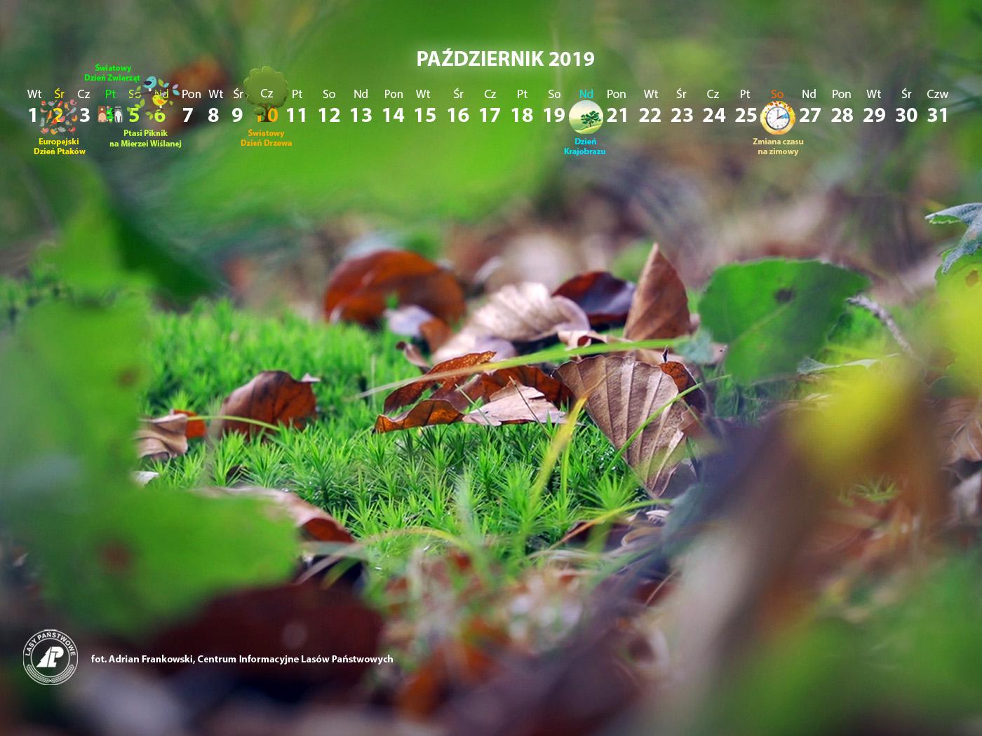 Kalendarz_październik_2019_1400x1050[1].jpg
