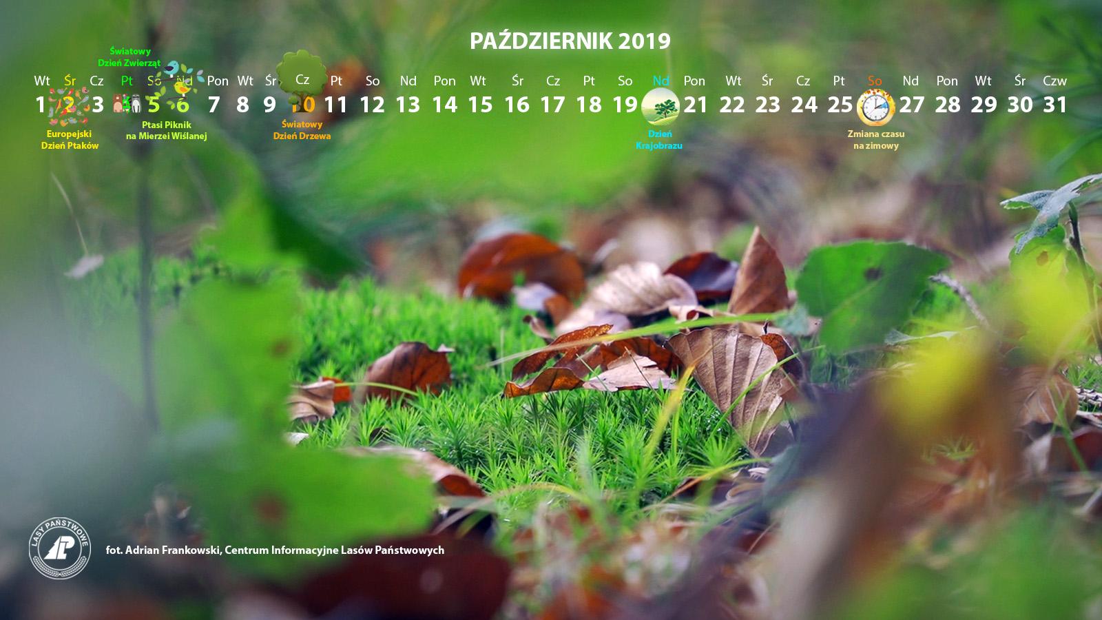 Kalendarz_październik_2019_1600x900[1].jpg